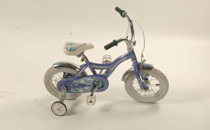 Schwinn Tigress Childrens Bike - Bicikli Fumić